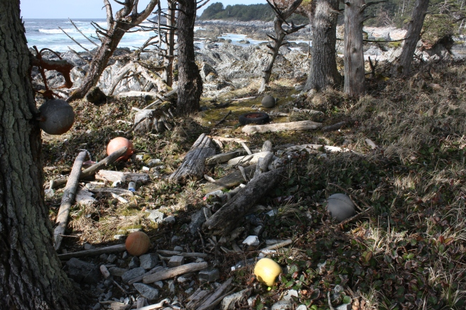 An assortment of fishing floats washed up on Langara Island