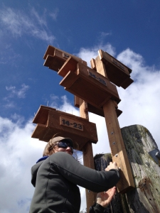 Hayley Shephard installing Purple Martin nest boxes.