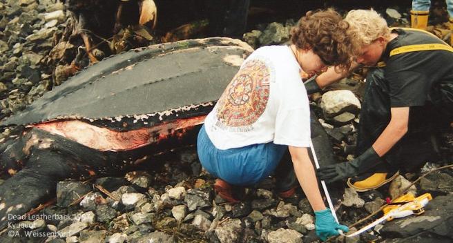 1997 Kyuquot _A Weissenborn _02 – Kyuquot school children