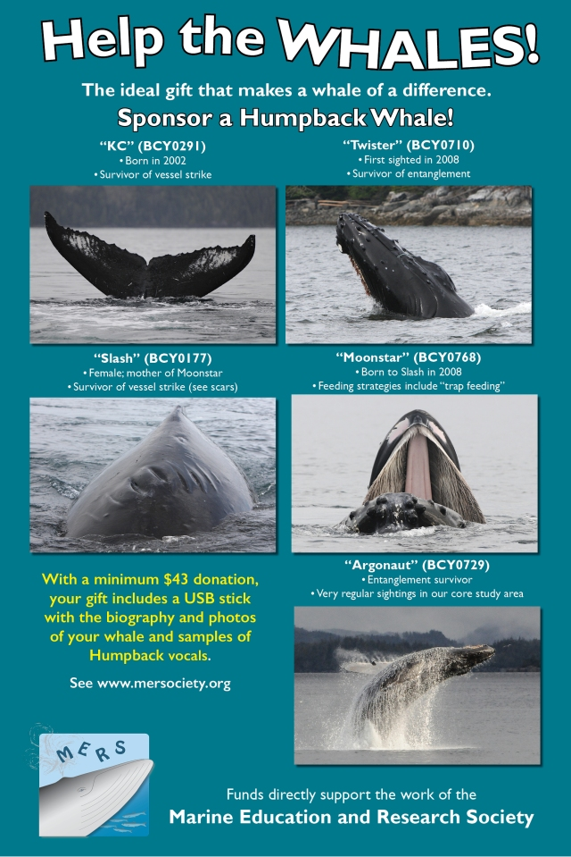 mers-poster-5-whales-2016