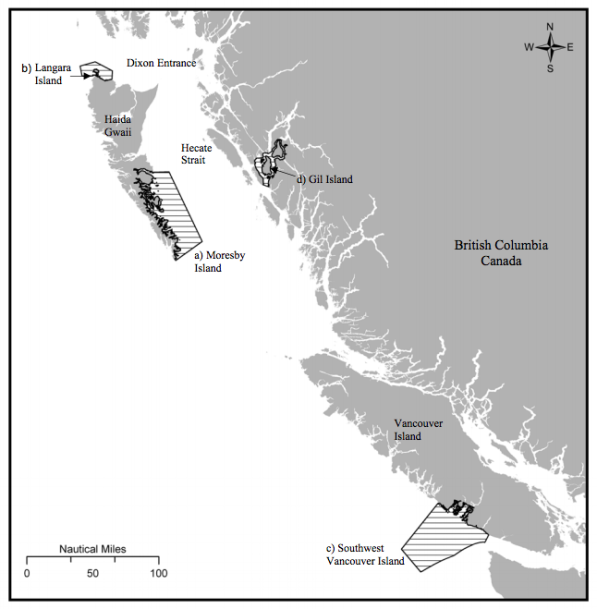 """Figure 4: """"Locations of the four critical habitat areas [for humpback whales]: a. Southeast Moresby Island, b. Langara Island, c. Southwest Vancouver Island, d. Gil Island (DFO 2009). The existence of other areas of critical habitat for Humpback Whales in B.C. is likely."""" Source: Fisheries and Oceans Canada. 2013. Recovery Strategy for the North Pacific Humpback Whale (Megaptera novaeangliae) in Canada. Species at Risk Act Recovery Strategy Series. Fisheries and Oceans Canada, Ottawa. x + 67 pp. http://www.sararegistry.gc.ca/virtual_sara/files/plans/rs_rb_pac_nord_hbw_1013_e.pdf"""